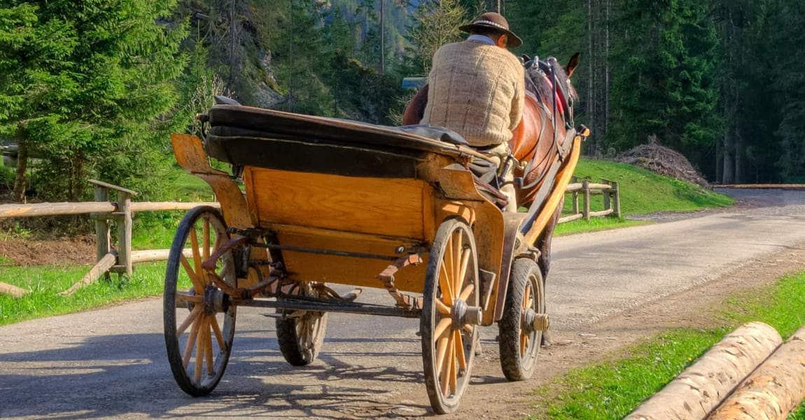 carrozza trainata da cavallo dolomiti