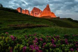Pale di San Martino tinte di rosa al tramonto. Enrosadira a San Martino di Castrozza in Trentino