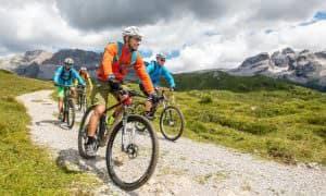 Mountain bike a Madonna di Campiglio, scopri i tracciati per i bikers più allenati o scegli la pista ciclabile della Val Rendena.